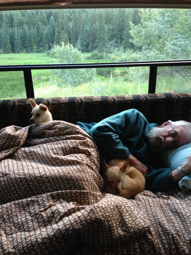 Dad napping with Duke and Daisy - first camping trip with our new trailer!